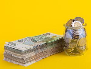 Dopłaty do kredytów w Tarczy antykryzysowej 4.0